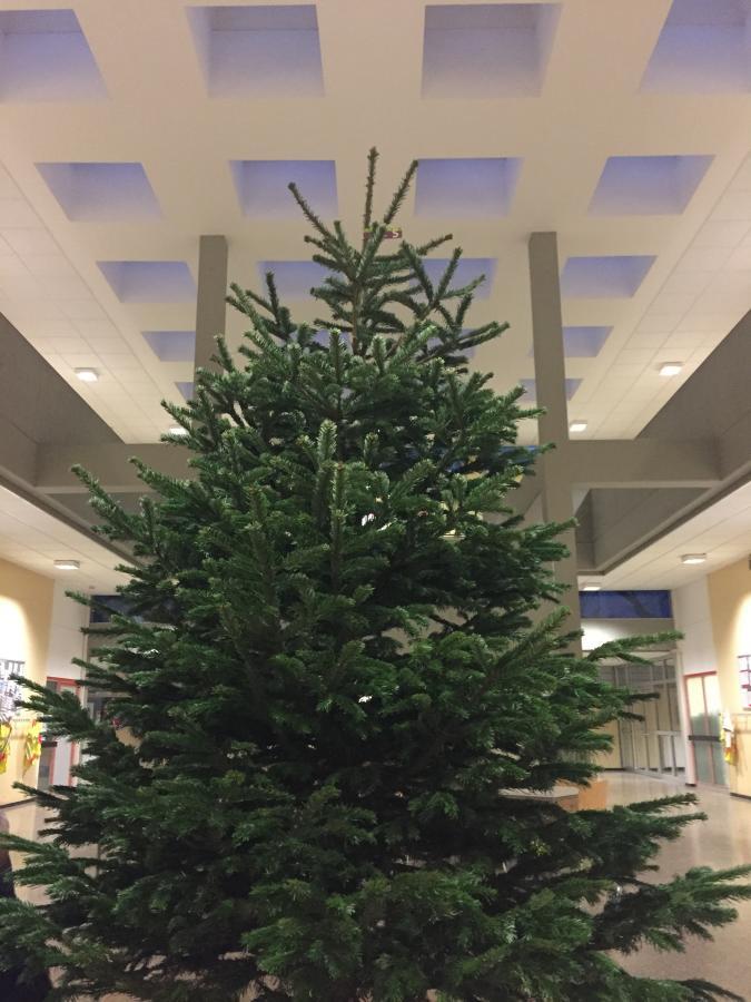 Weihnachtsbaum GGS