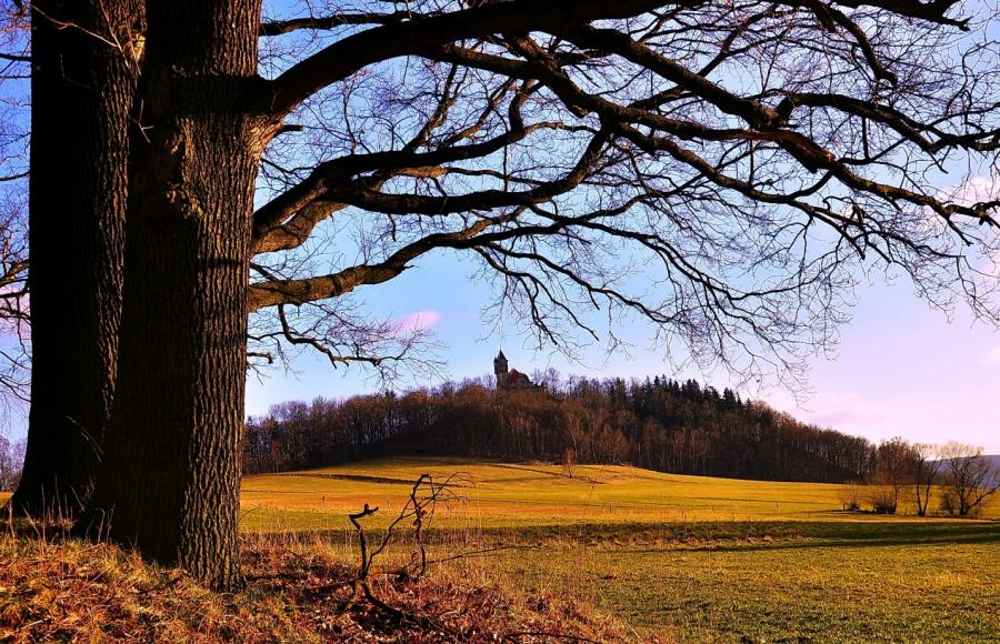 Blick zum Burgsberg