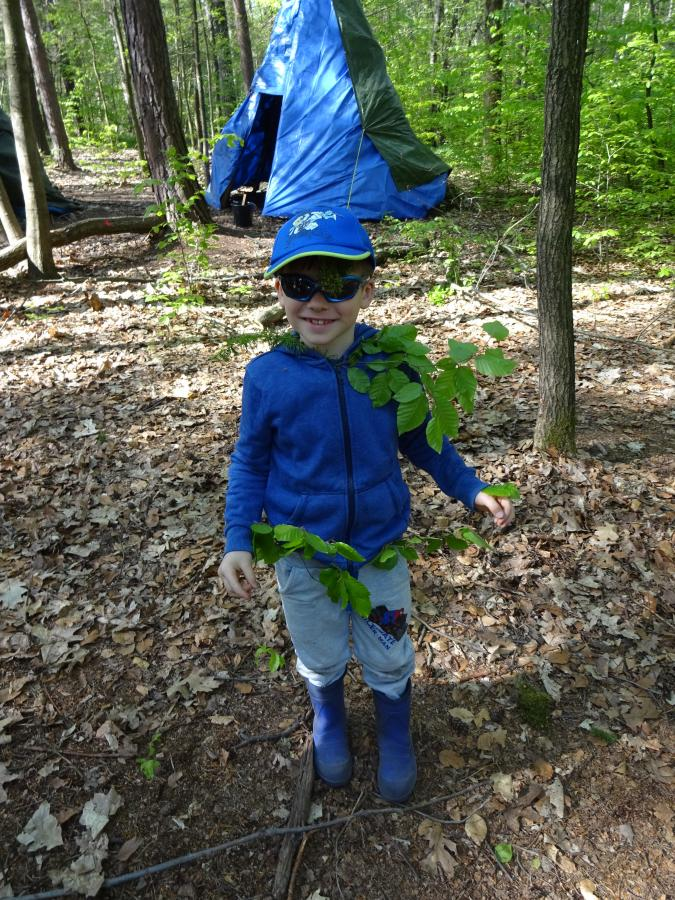 Tarnung im Wald