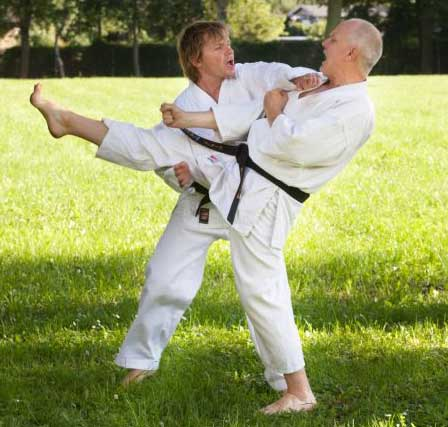 2014 Karate