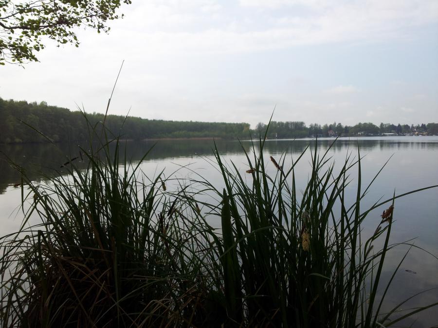 Flakensee