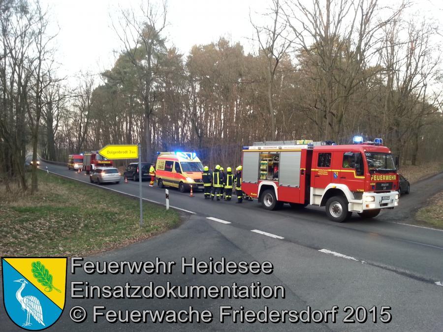 Einsatz 24/2015 Verkehrsunfall L39 Abzweig Dolgenbrodt 15.02.2015
