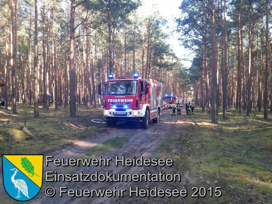 Einsatz 97/2015 Waldbrand Hammer 1 Hektar 05.06.2015
