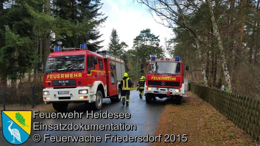 Einsatz 163/2015 Baum über Straße Bindow Ernst-Thälmann Straße 18.11.2015