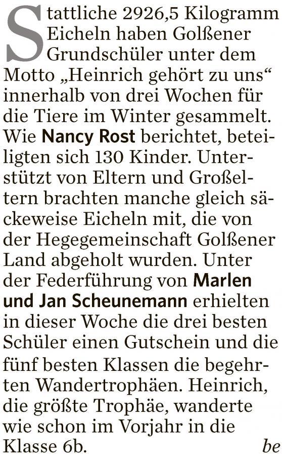 2015_11_21 Golßen LR Eicheln