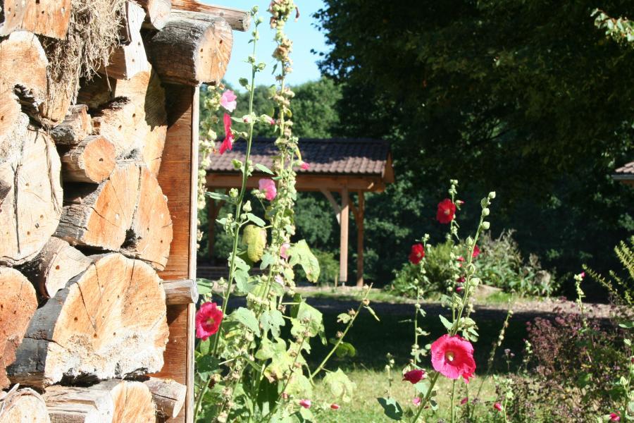 Stockrosen - Insektenhotel