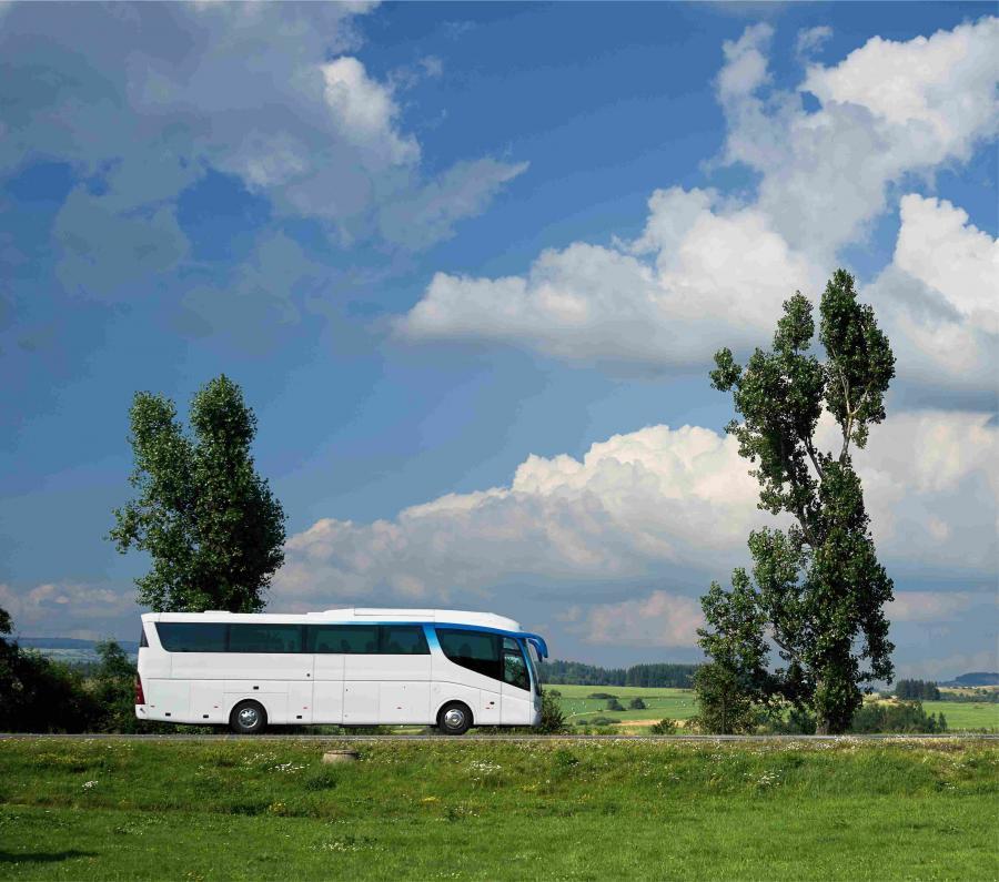 Busrundfahrt Fläming