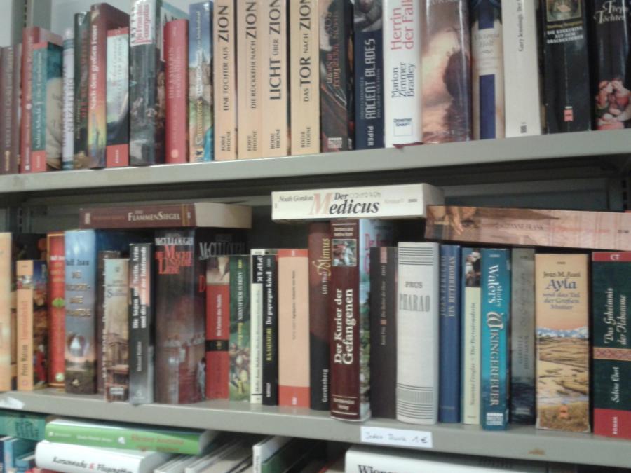 gebrauchte historische Romane