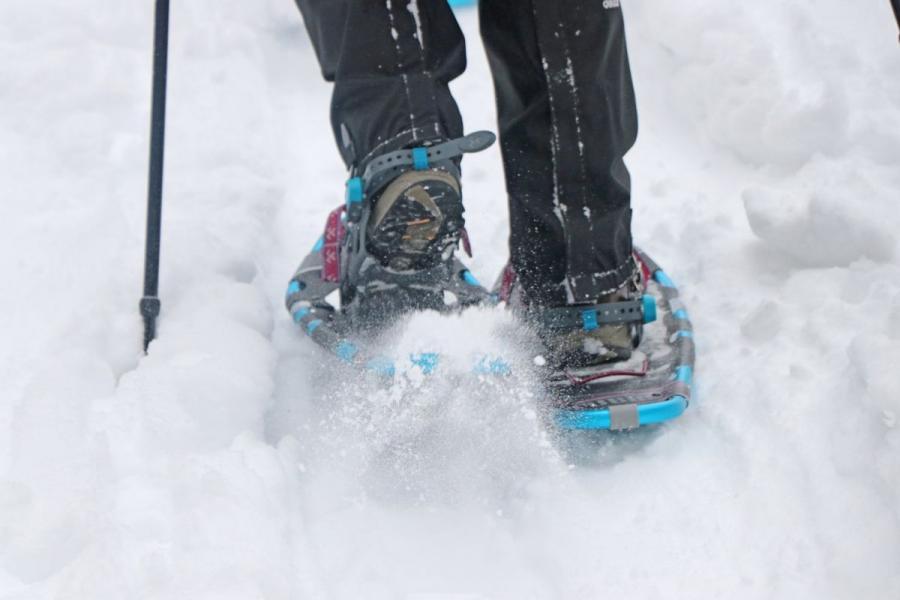 Mit Schneeschuhen unterwegs rund um Bayerisch Eisenstein