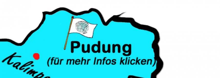 Pudung