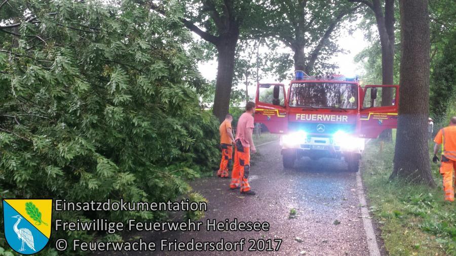 Einsatz 64/2017 | mehrere Bäume auf Straße und PKW | Blossin Kolberger Straße | 22.06.2017