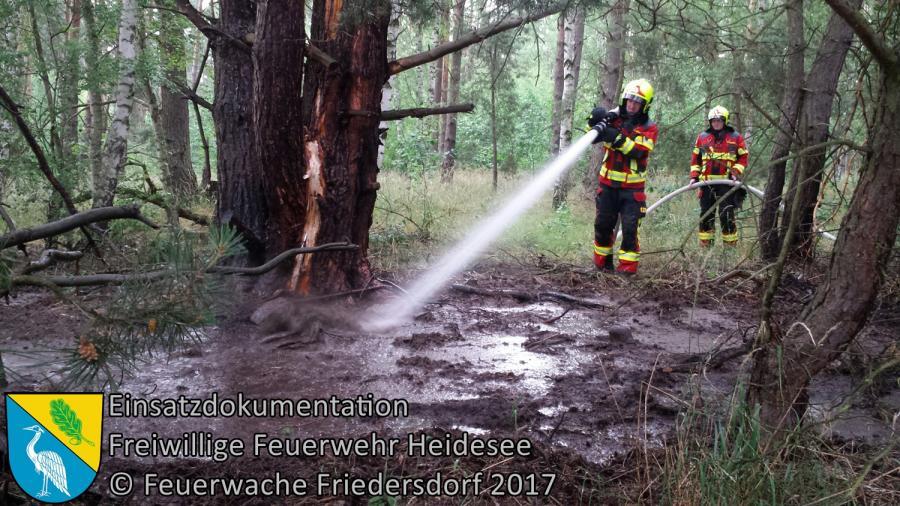 Einsatz 68/2017 | 20m² Waldbodenbrand | Prieros Münchehofer Straße | 22.06.2017