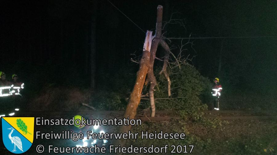 Einsatz 259/2017 | Baum in Oberleitung | Bindow Kablower Weg | 05.10.2017