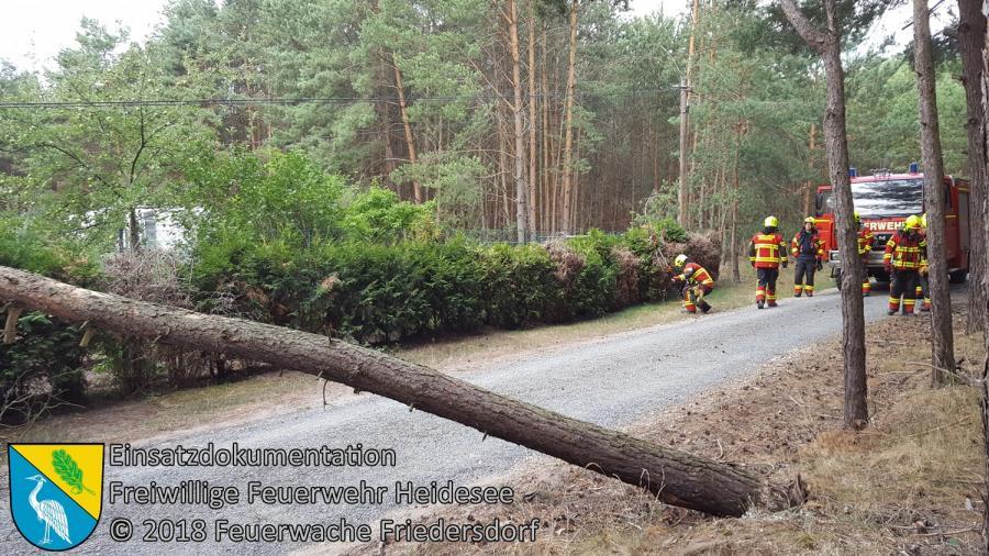 Einsatz 82/2018 | Baum in Telefonleitung | Friedersdorf Straße Nr. 11 | 07.07.2018