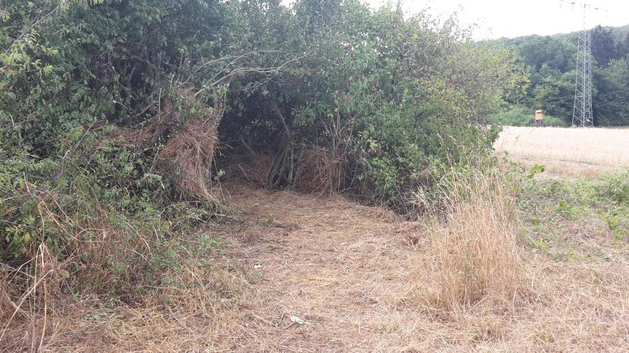 Toiletteneingang