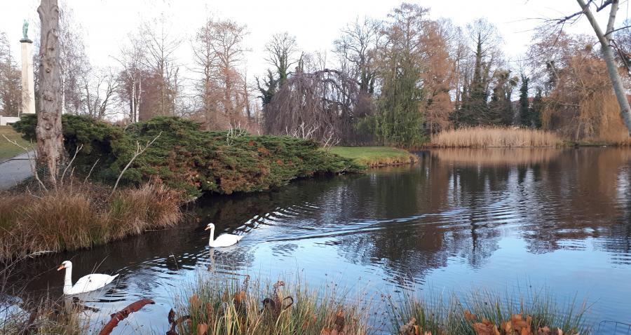 Winter2018 Park Sanssouci