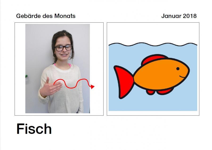 2018_01 Fisch