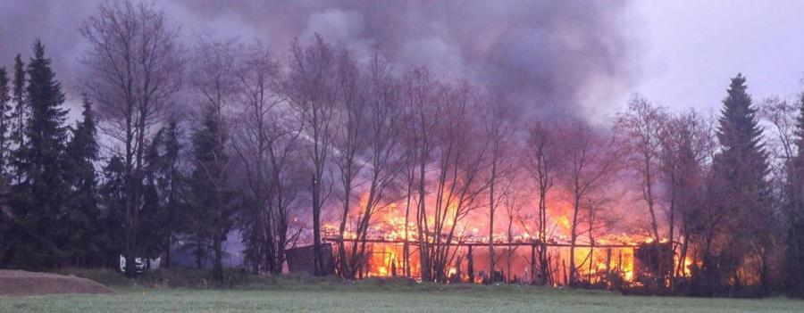 2019-03-27 Gebäudebrand Papenkamp 1