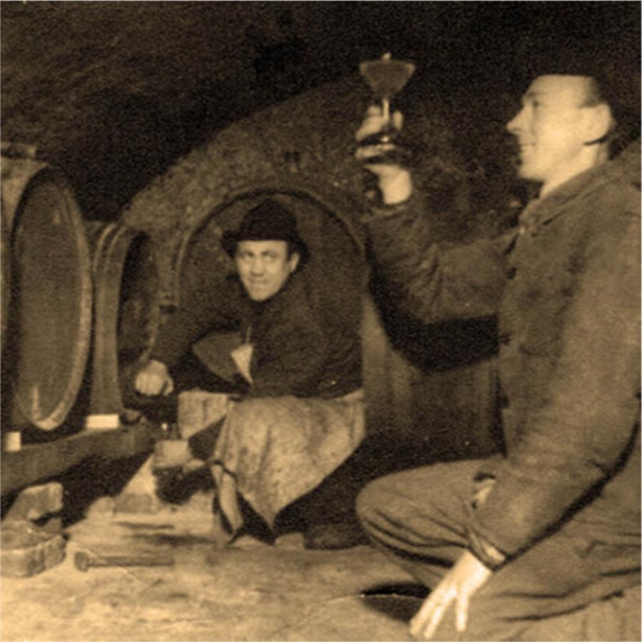 Weinanbau in Jessen -  Weingut Zwicker