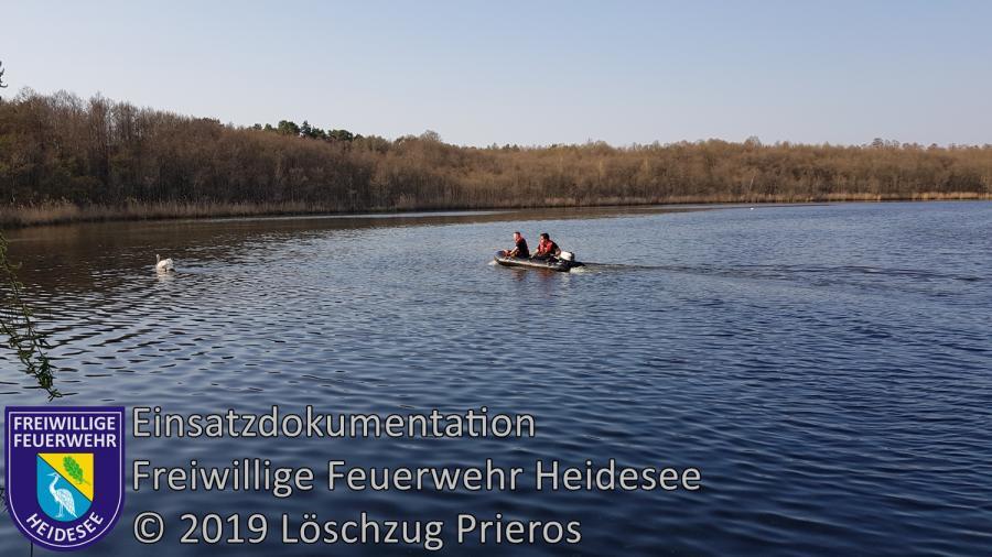 Einsatz 30/2019 | Schwan mit Angelhaken im Schnabel | Blossin Kolberger Straße | 07.04.2019