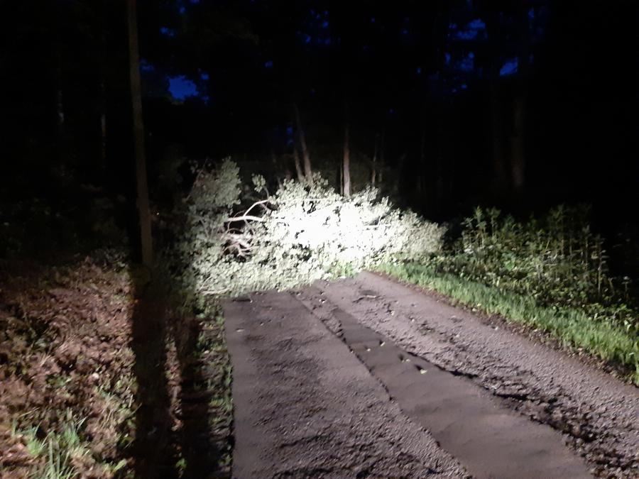 Baum auf Fahrbahn, Höhe Kläranlage 22.07.2019