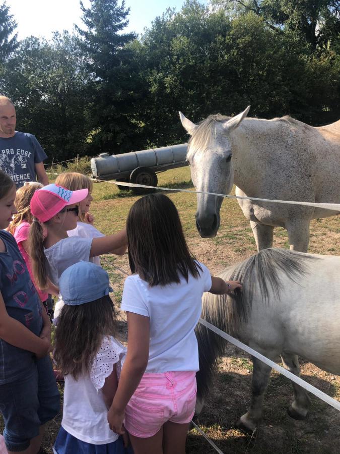 Ferienprogramm Großenlüder - mit der DJK-SSV Großenlüder ein Nachmittag auf dem Bauernhof