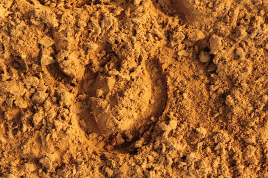 18- huf im sand
