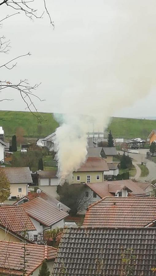 Heckenbrand