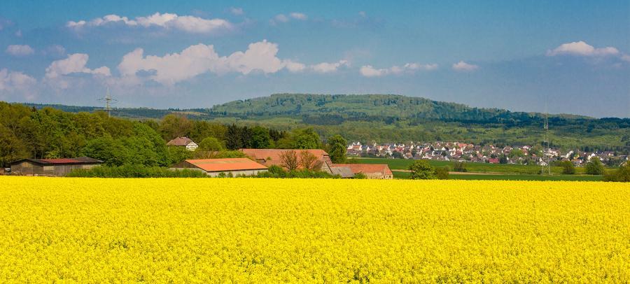 Blick auf Waitzrodt und Holzhausen