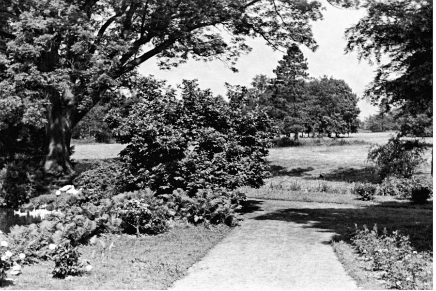 Blick von Veranda auf Park