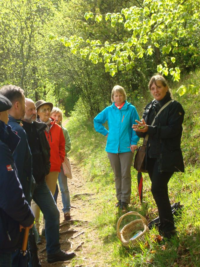 Kräuterexkursion mit Daniela Reisch - Foto: Heidi Ziegler