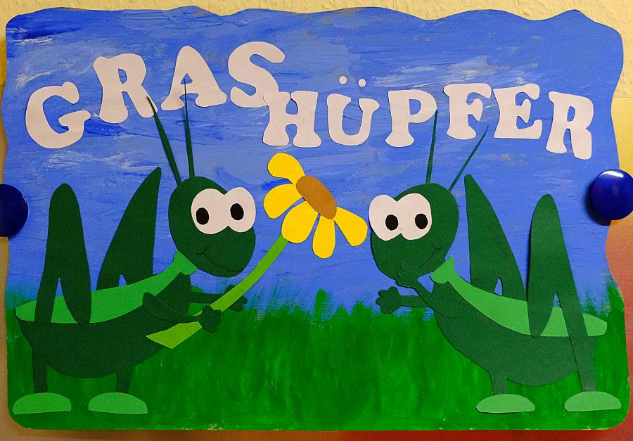 Gruppenbild Grashüpfer