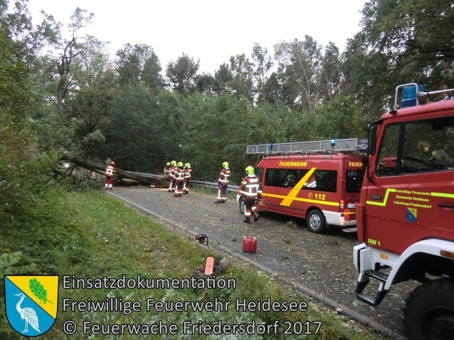 Einsatz 154/2017 | Baum über Straße | L39 OV Friedersdorf - Blossin | 05.10.2017