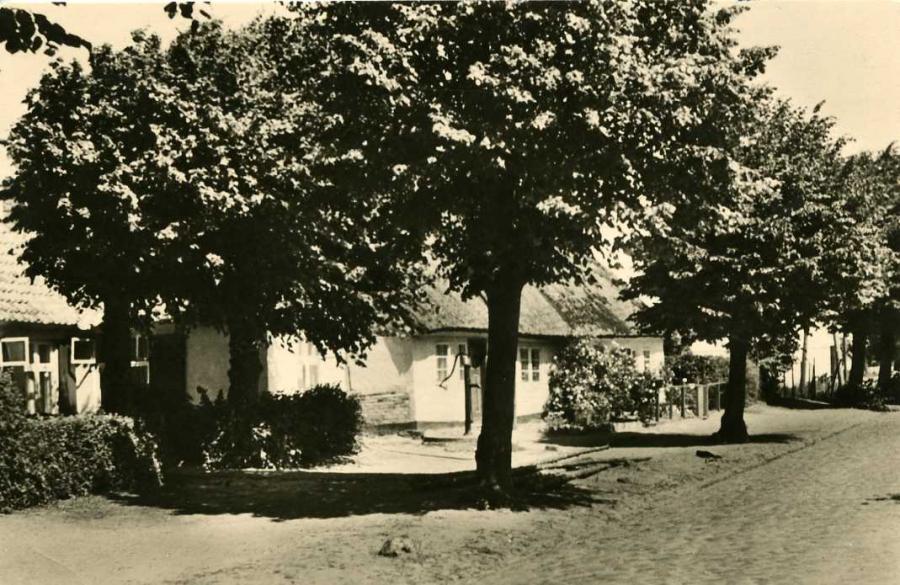 3 Schaprode 1962