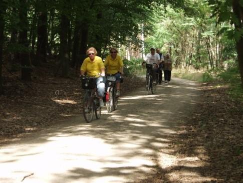 Radwanderweg entlang der Glückburger Heide