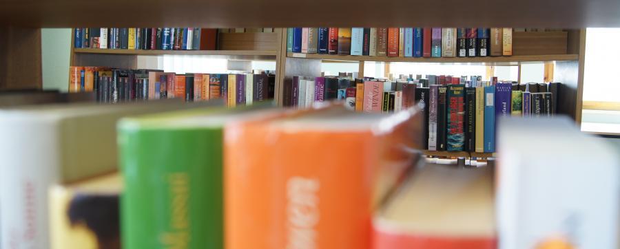 In der Merkerser Bibiliothek erwarten Sie viele spannende Bücher!