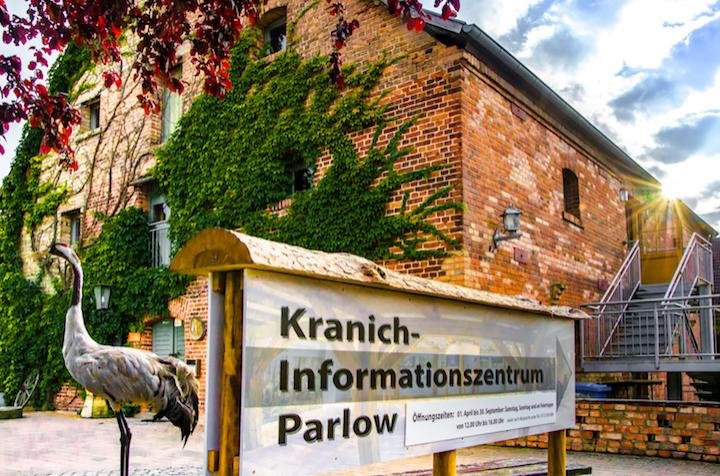 Kranich-Informationszentrum