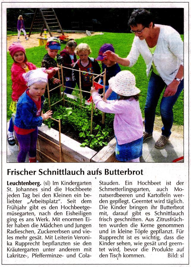 Frischer Schnittlauch im Kindergarten - NT 10.06.2014