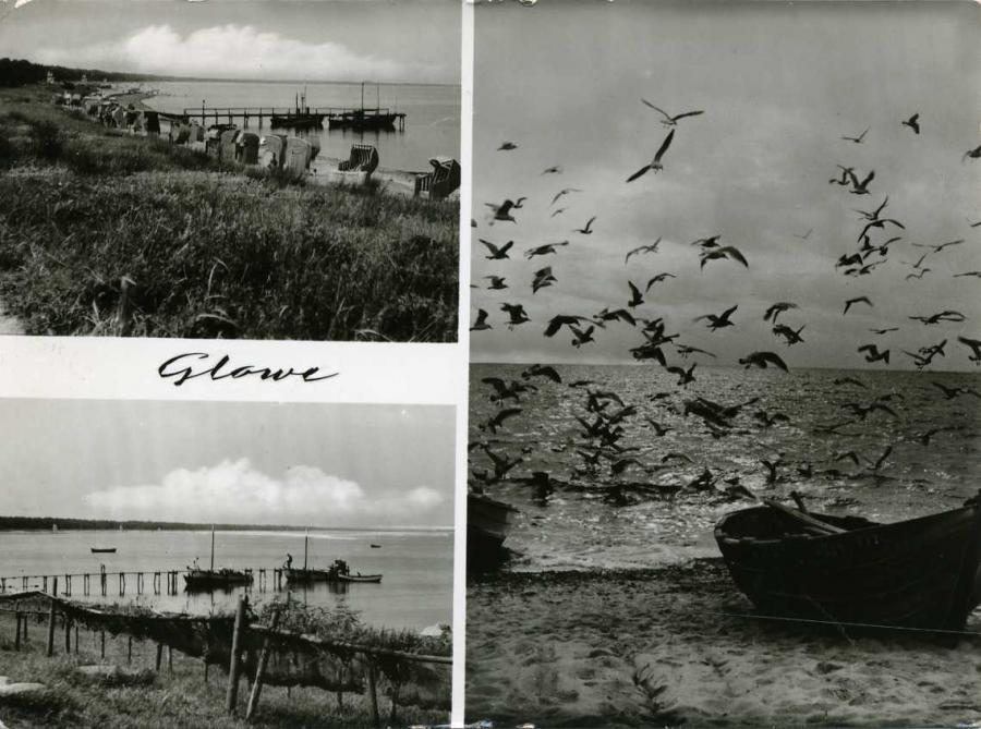 4 Glowe 1965