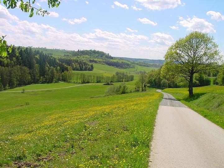 Rad- & Wanderwege