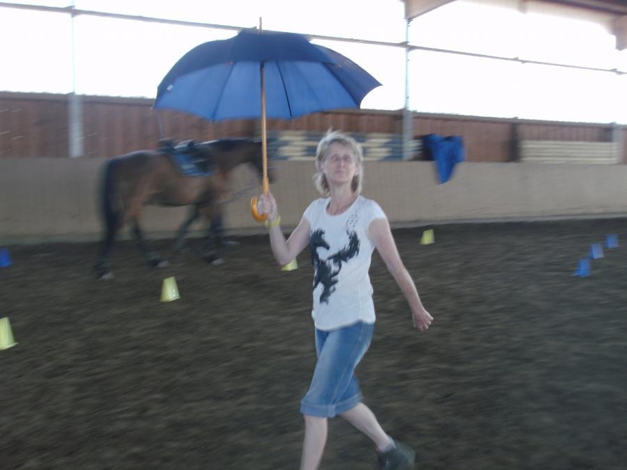 Gelassenheit - Wandelnde Regenschirme
