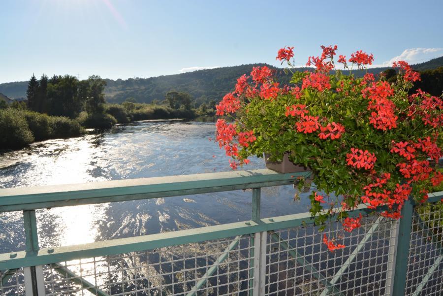 W. Apel Blick von der Brücke Blumenkasten