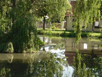 Bockwitz - Teich