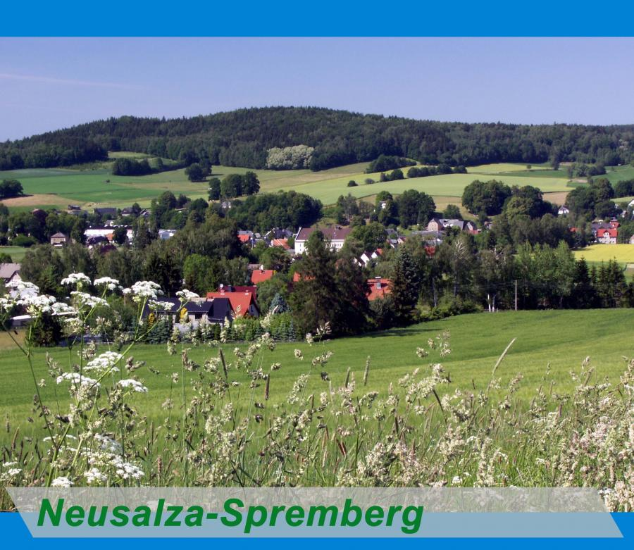 Neusalza Spremberg Button
