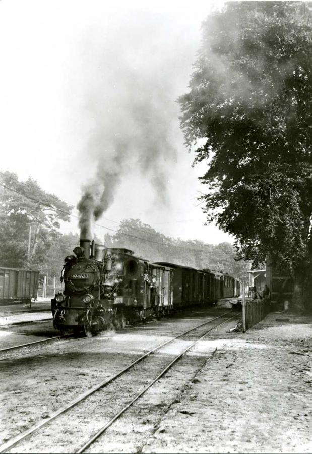 Schmalspurbahn Putbus-Göhren