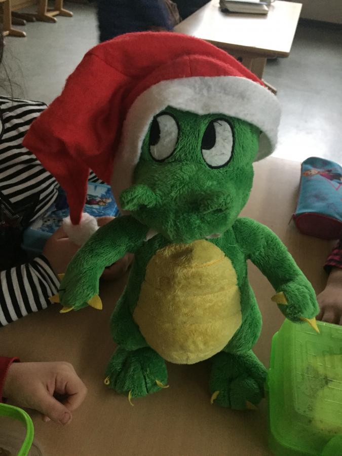 Momo in Weihnachtsstimmung