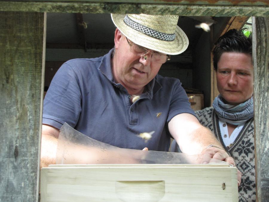 Frau Hövener und Herr Neumannn Imker aus Plau leistet in Augzin Pionierarbeit beim Aufbau der Bienenzucht  Foto J. Gössling