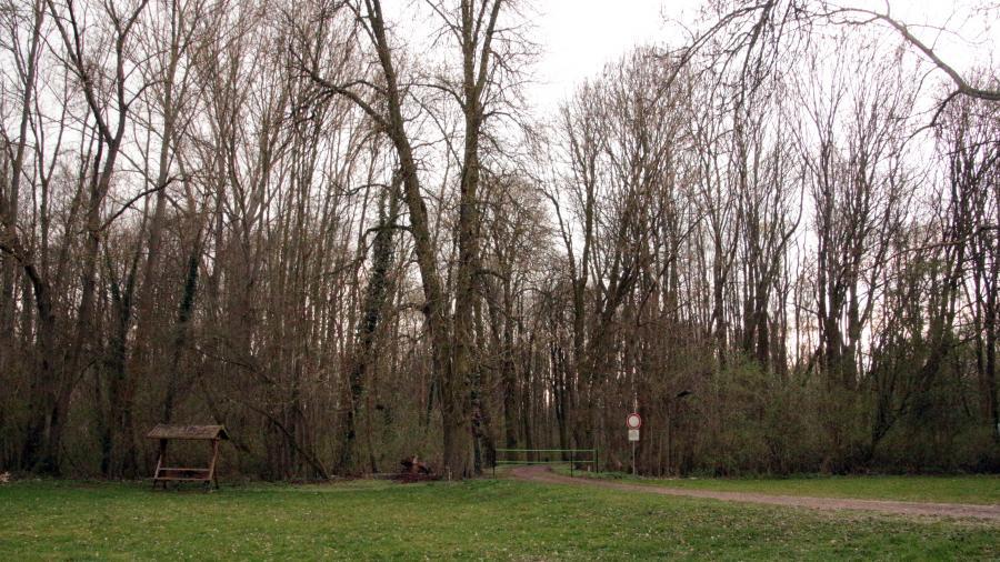 Zum Schlosspark
