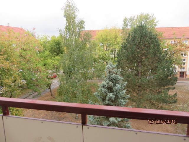 Blick vom Balkon 1216_0401