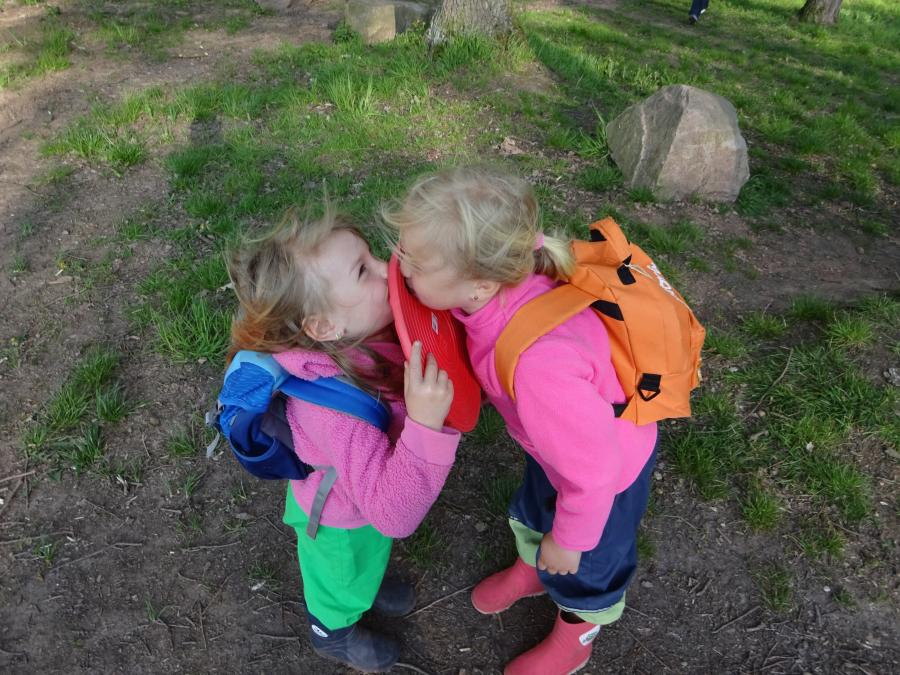Freunde im Wald